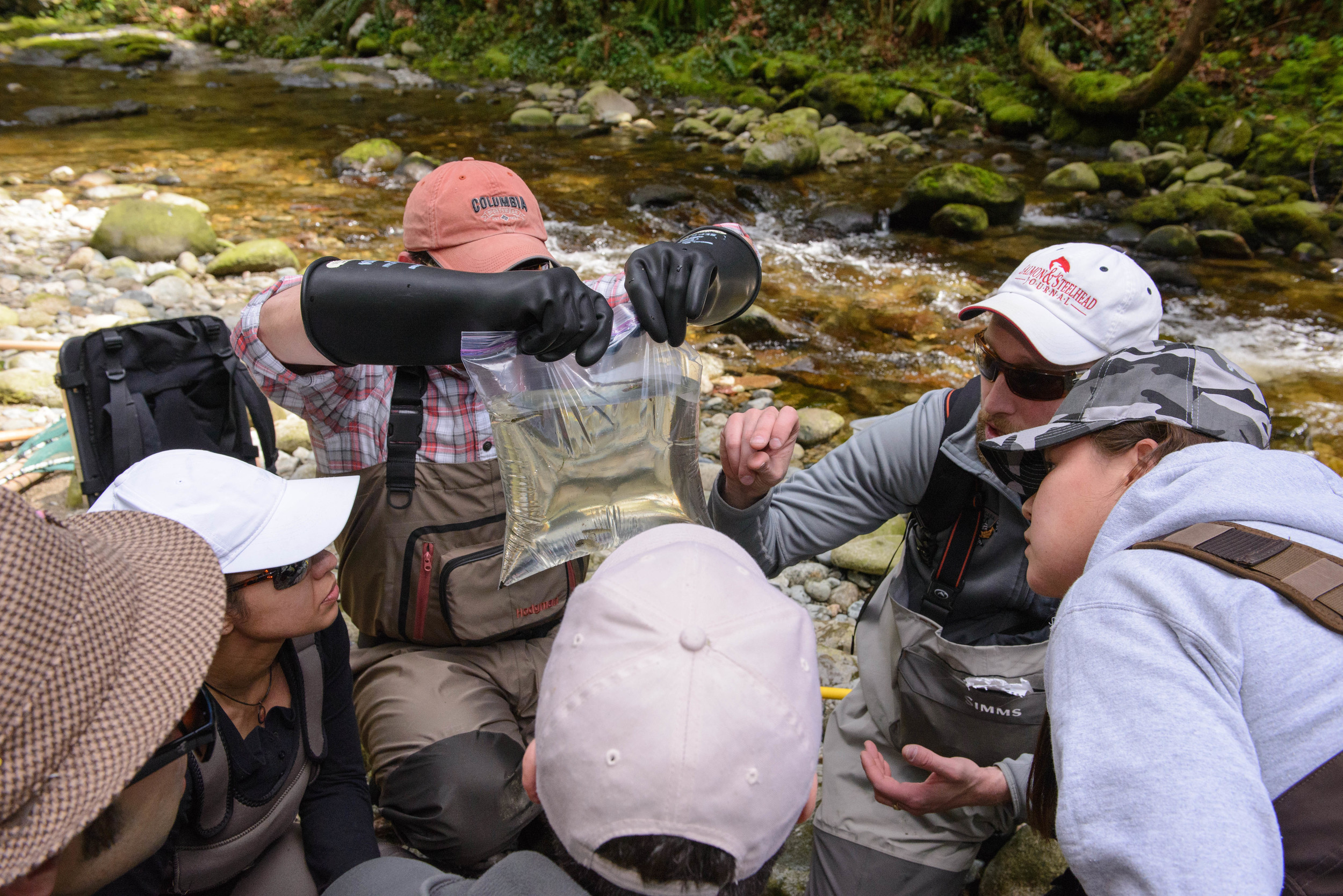 """This was my favorite course I have ever taken. I was extremely engaged and interested in the subject and the instructor was so fantastic.""    — Darcie Powell, Biologist, Fort St John, B.C."