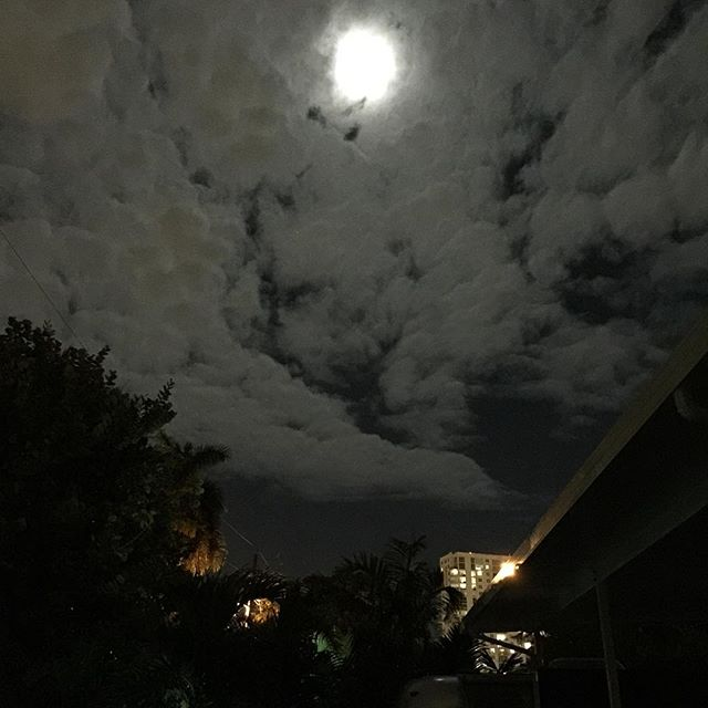 """For those of you who have never witnessed a real """"Moon over Miami"""" here it is. (I just m🌝🌝ned you...😁)"""