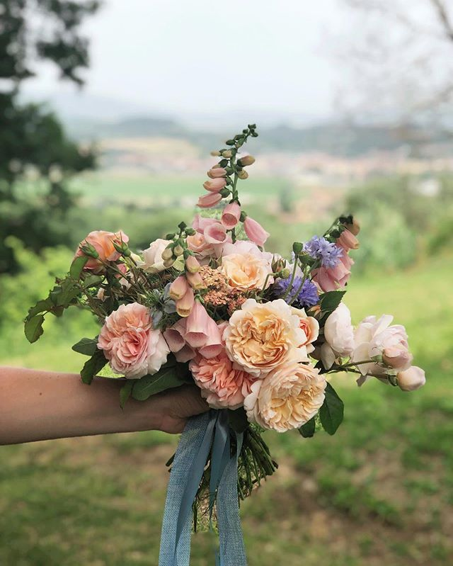 Flowering in Tuscany! Want to join us?  Follow the link in our profile to learn all about our Tuscan Gathering. Open to all levels of floral design, you'll pick flowers at an organic flower farm, stroll through olive groves, enjoy oil & wine tastings, begin your day with yoga and so much more!  We can't wait to see you at @stradatoscana!