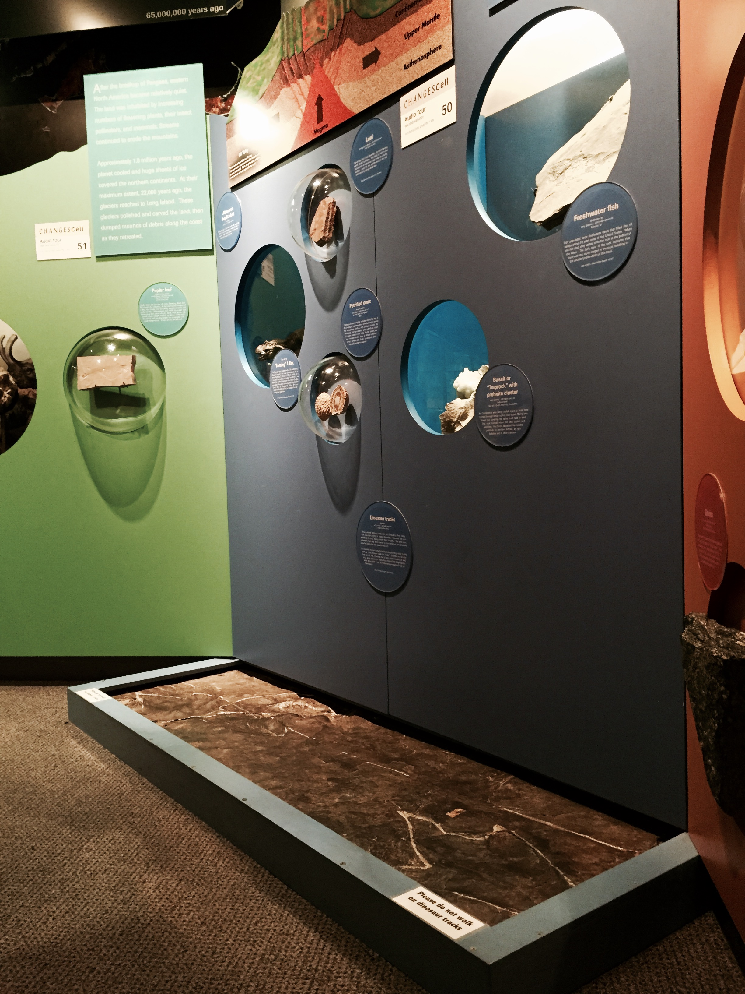 Triassic dinosaur footprints in the Changes in our Land gallery.