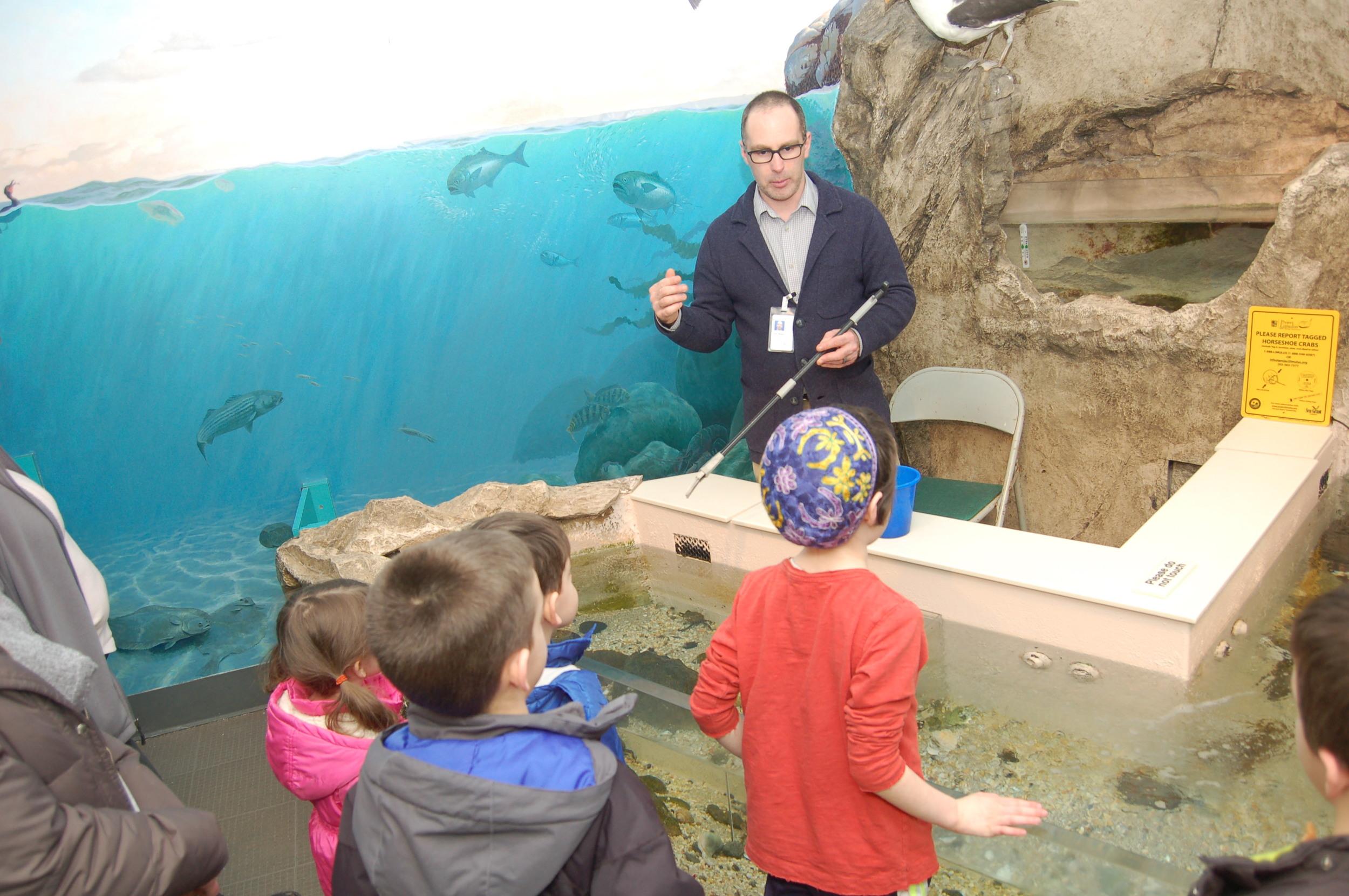Children enjoy watching the marine aquarium inhabitants being fed. Photo by Cynthia Ehlinger.