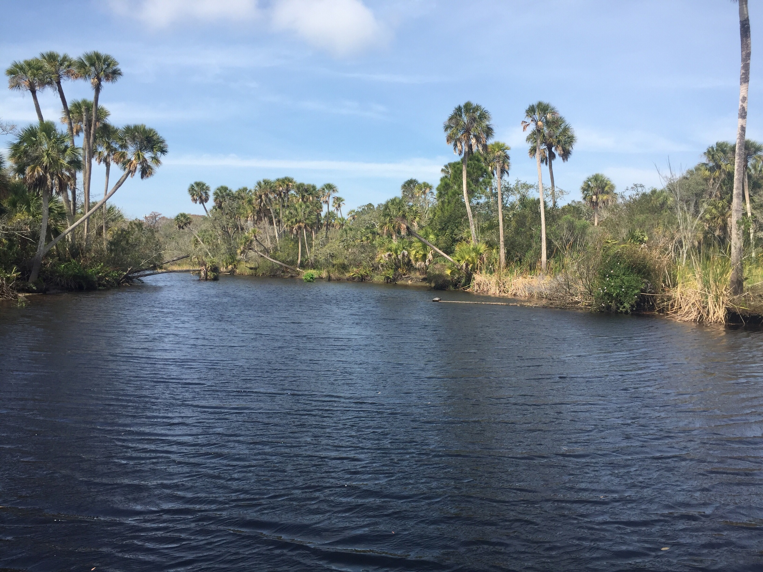 Anclote River in Pasco County.