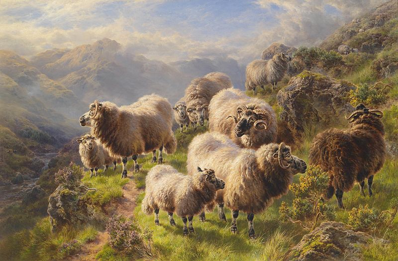 People with aphantasia have reported on being very confused as children when their parents told them to count sheep to help them get to sleep. Art by William Watson.