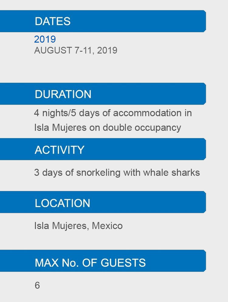 WHALE SHARK DETAILS.jpg