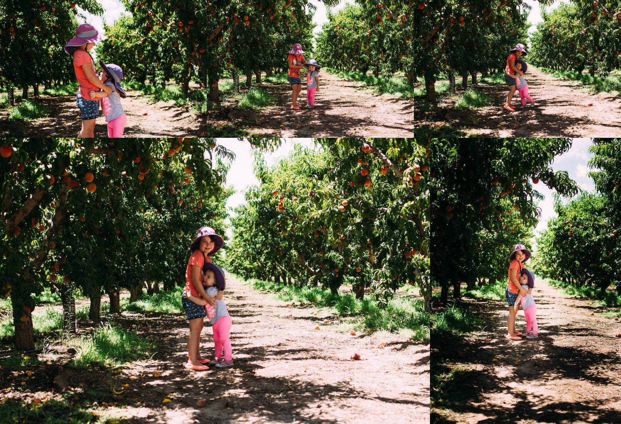 AppleAnnies_0013.jpg