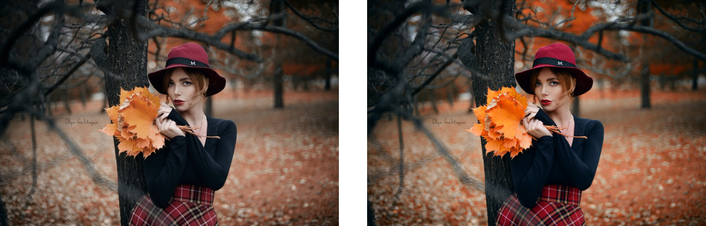 """Left: the light and color accuracy recorded at the sensor. Right: the """"special sauce"""" image as saved by the camera.Images courtesy,  NikonPC.com ."""