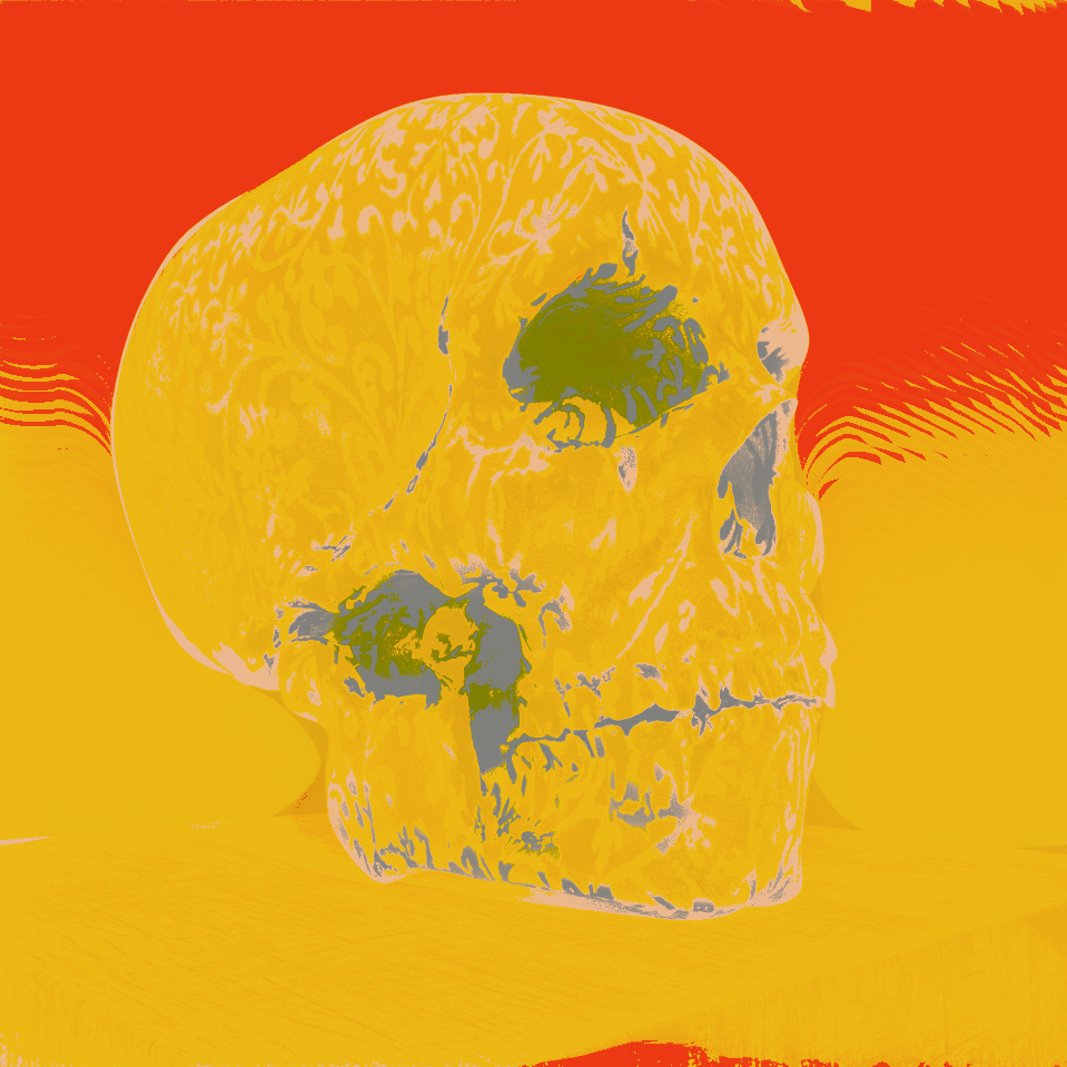 skull_cybermonk-de_artification_009.jpg