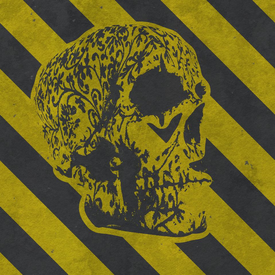 skull_cybermonk-de_artification_017.jpg