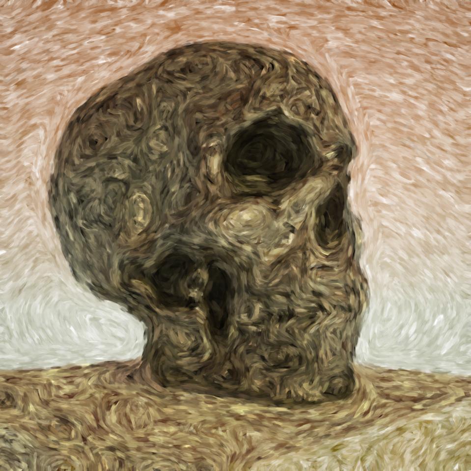 skull_cybermonk-de_artification_018.jpg