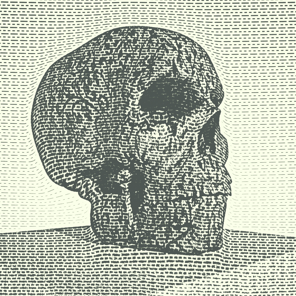 skull_cybermonk-de_artification_019.jpg