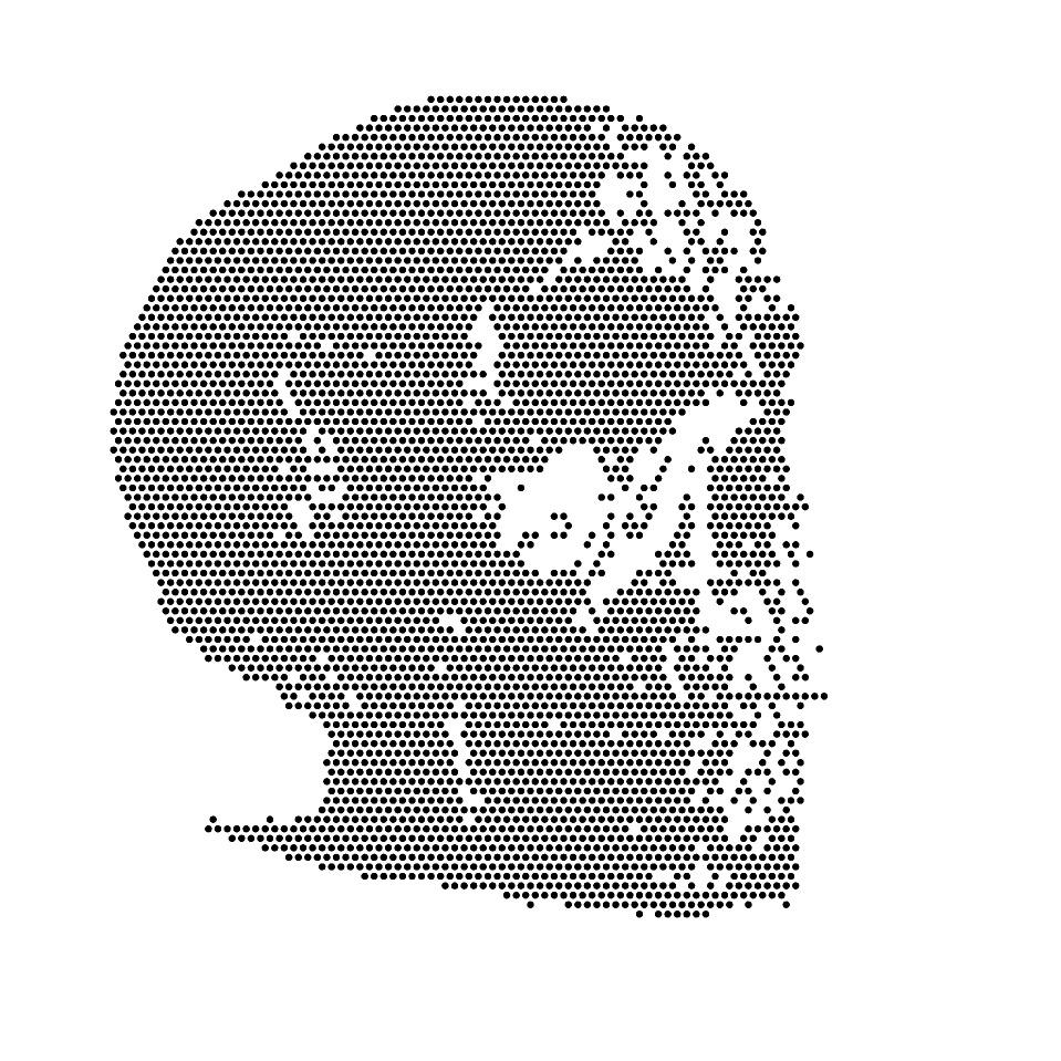 skull_cybermonk-de_artification_023.jpg