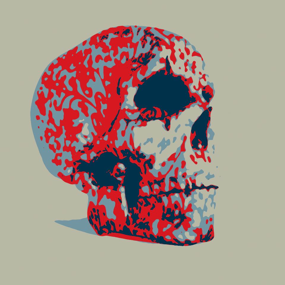skull_cybermonk-de_artification_022.jpg