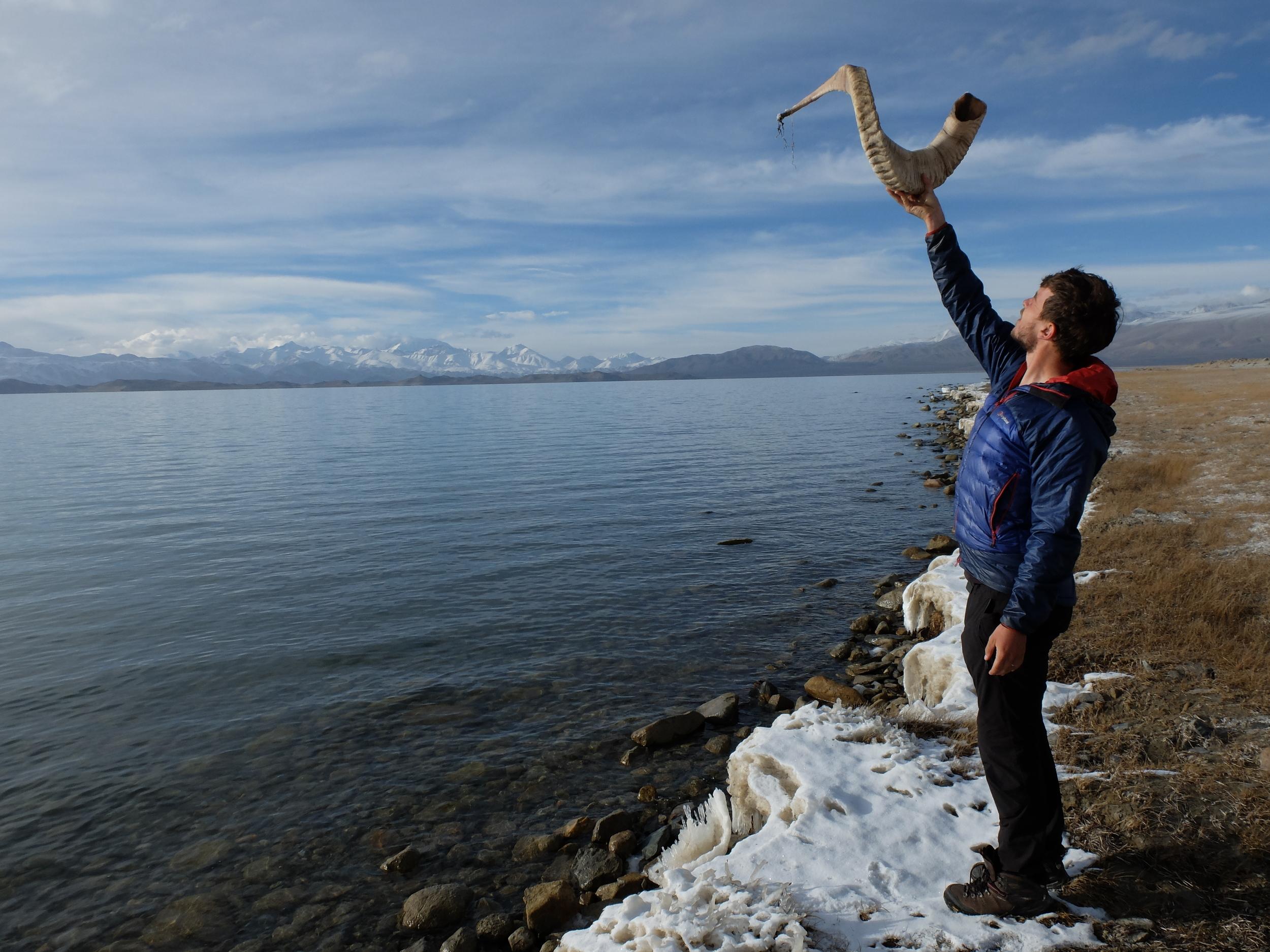 Marco Polo sheep horn on the edge of Karakul lake
