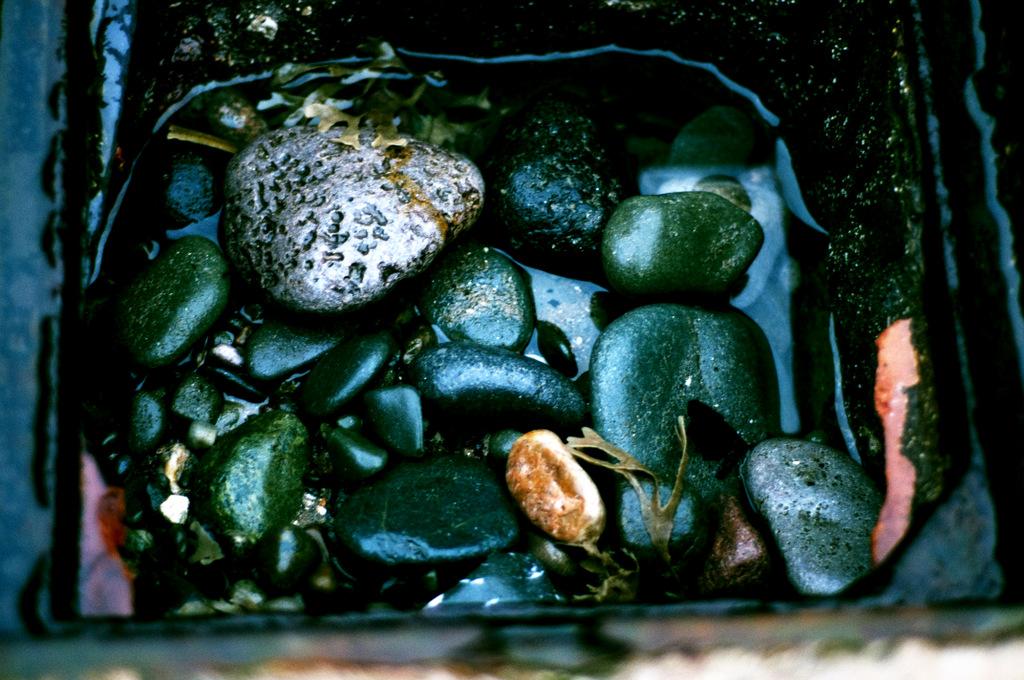 Stone jewels.jpg