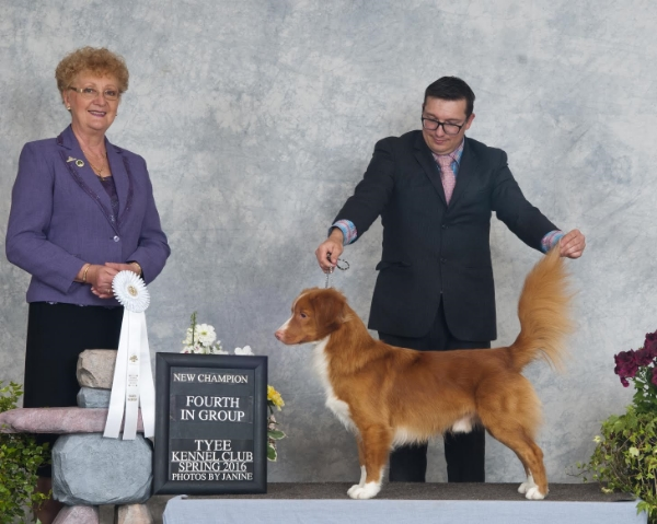 Judge Carol Mulcahy presenting Daintree Dad's Best Jeans with his Group 4th ribbon in Duncan BC. Handler Aaron Andriash and photographer Janine Starink.