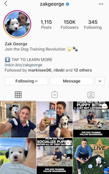 @Zakgeorge  Easily one of the most watchable online dog training personalities with science-backed, positive reinforcement methods everyone can adopt.
