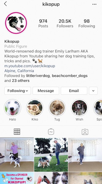 @kikopup  Emily has hundreds of Youtube dog training videos and her methods are positive plus proven.