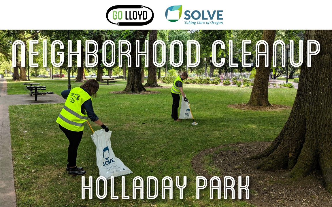 GL and SOLVE Neighborhood Cleanup Website Image.png