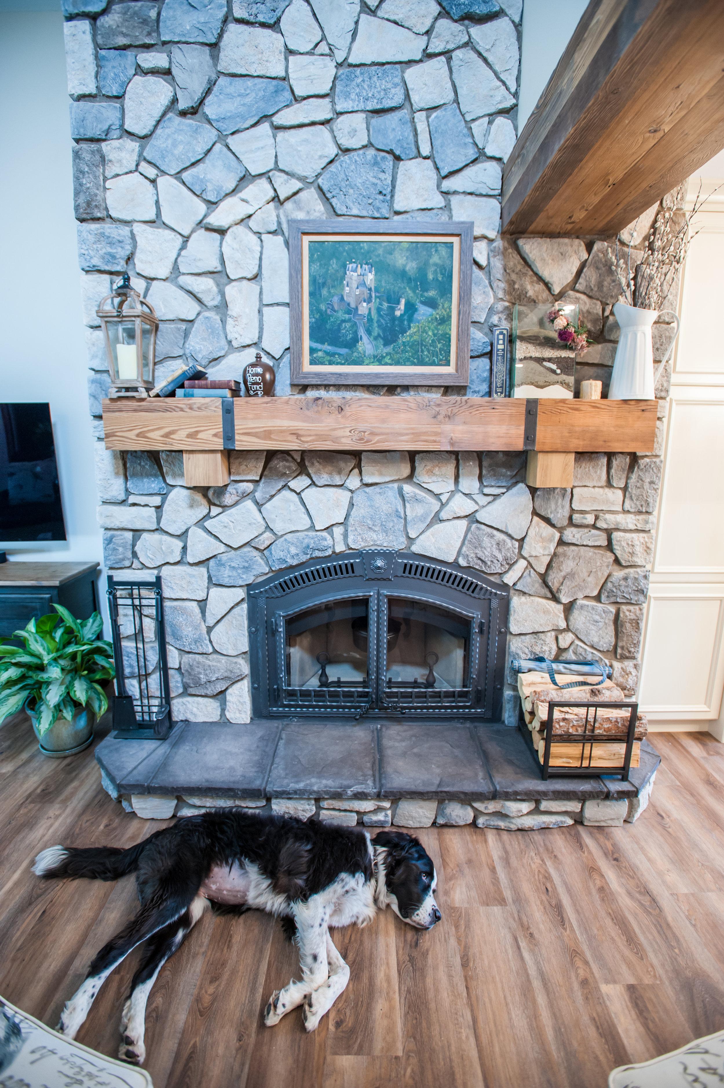 doggy_sleeping_fireplace