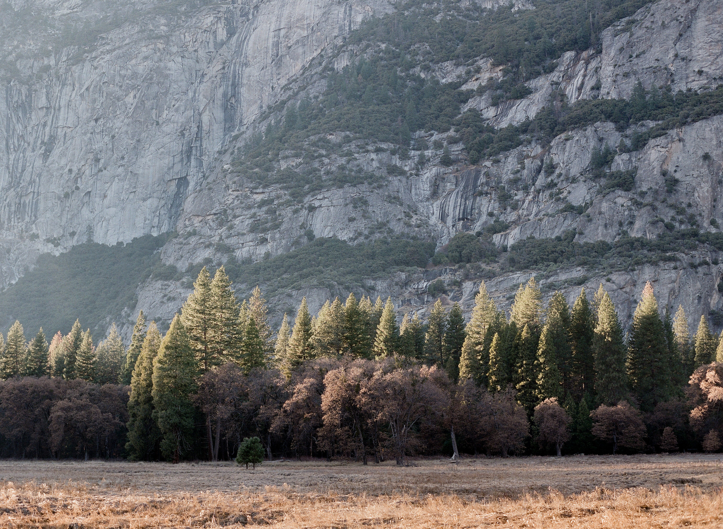 Cook's Meadow, Sunset, Yosemite Valley