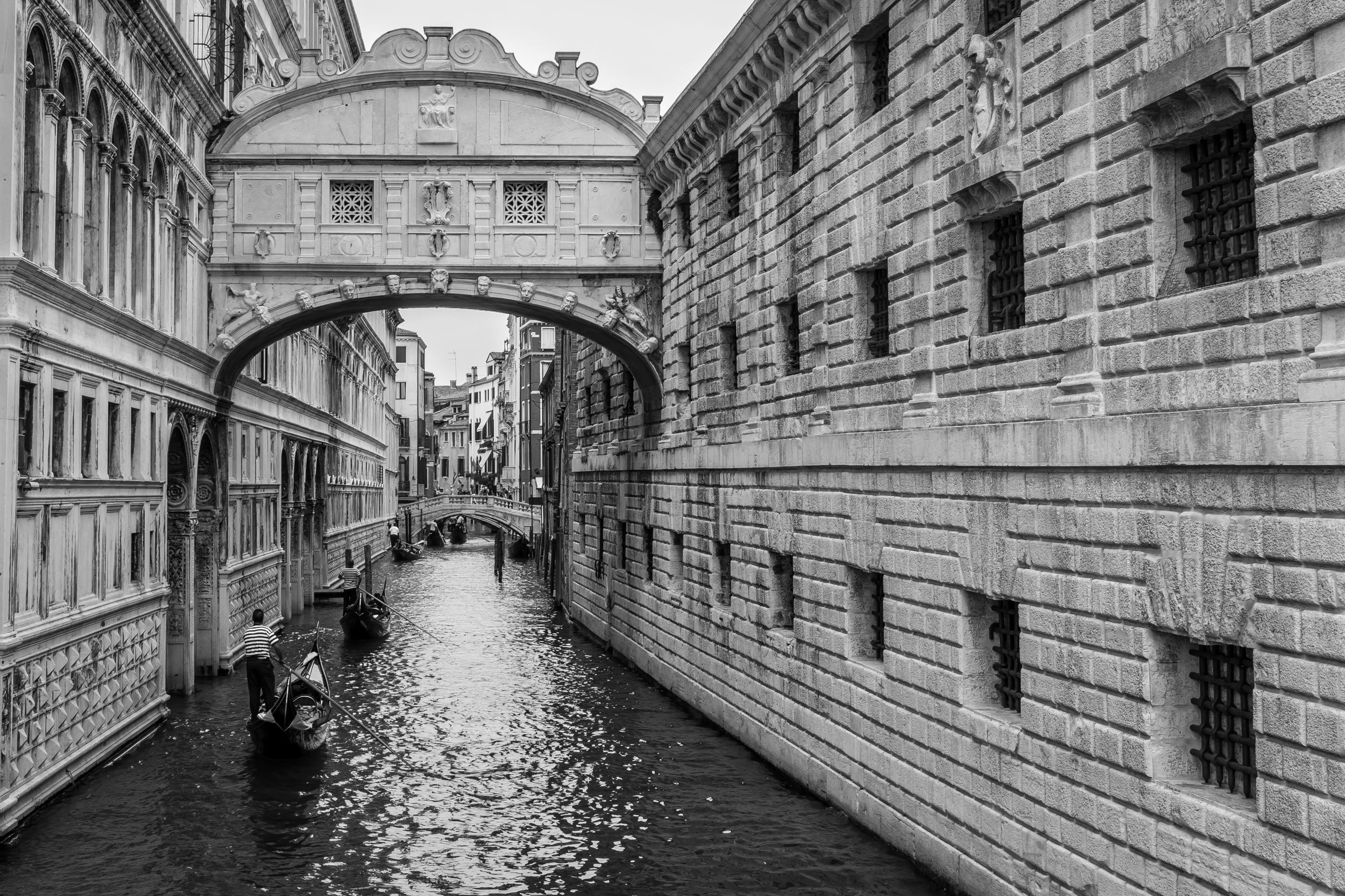 Venice Seven-12.jpg