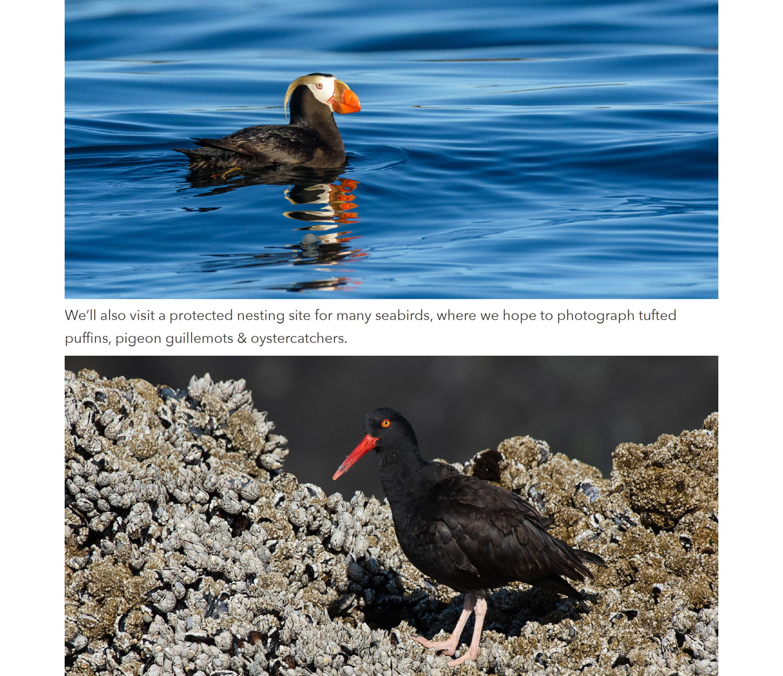 7 vancouver island photo workshop.jpg