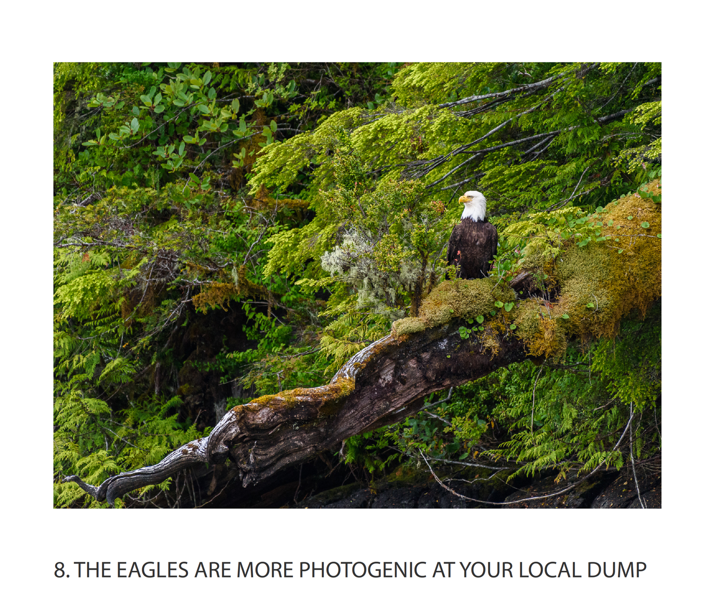 19 vancouver island photo workshop.jpg