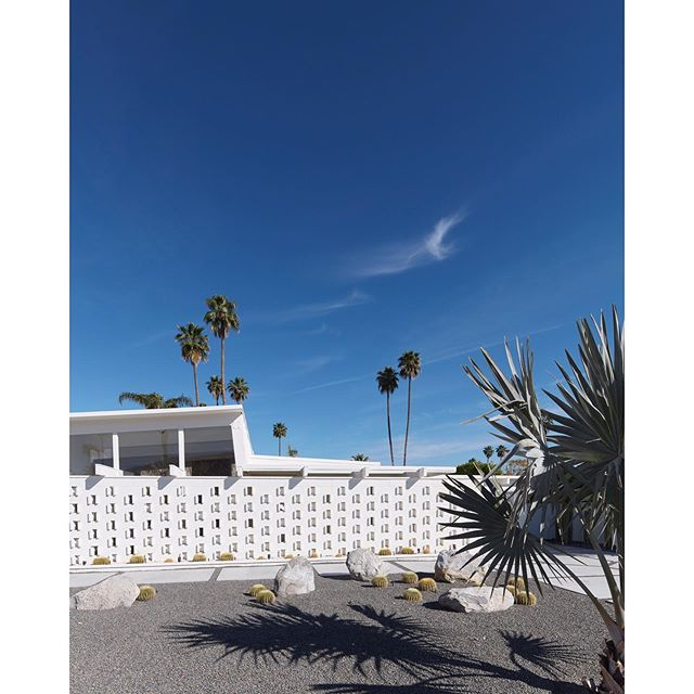 "Thank you for the feature, @1stdibs  Palm Springs (White) Frank Schott 60"" x 48"" / 152cm x 122cm from a series exploring desert landscapes and deserted places"