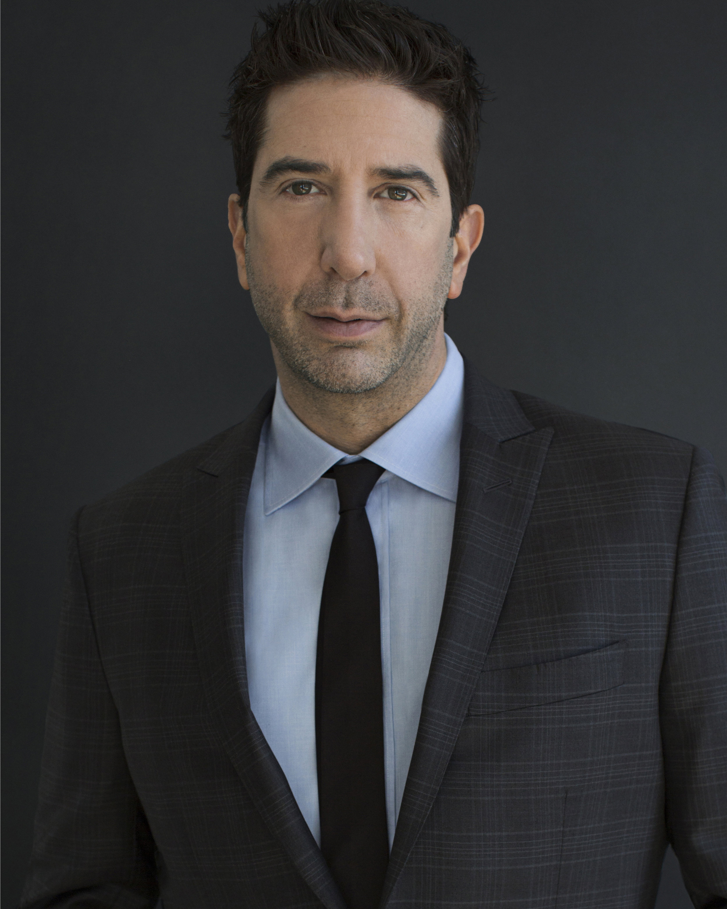 David Schwimmer /  ITS harassment campaign