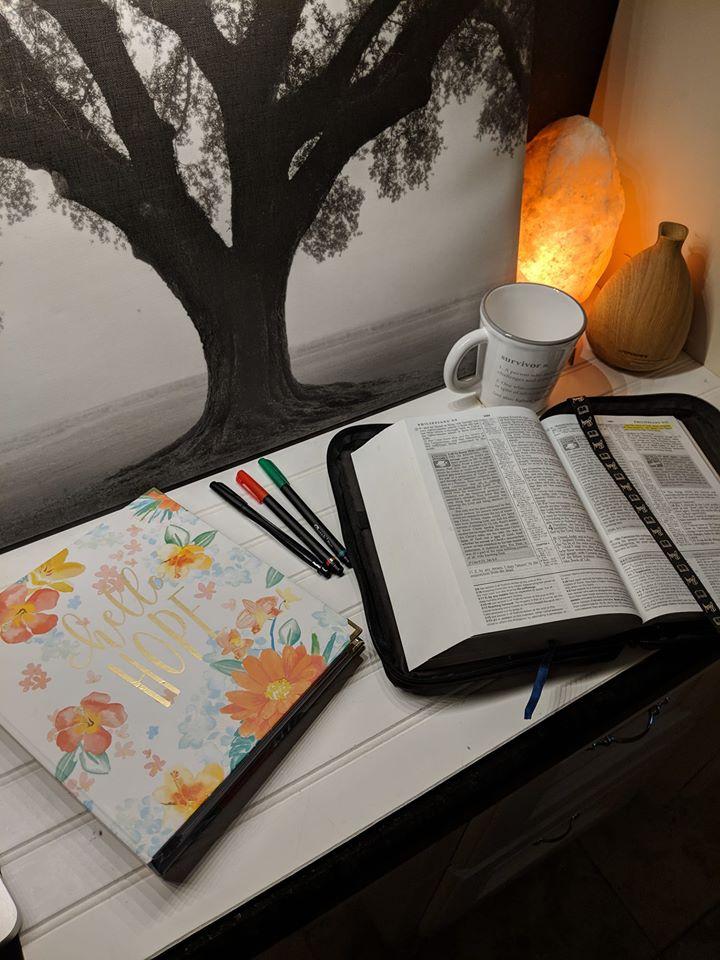 BibleStudyWorkspace.jpg