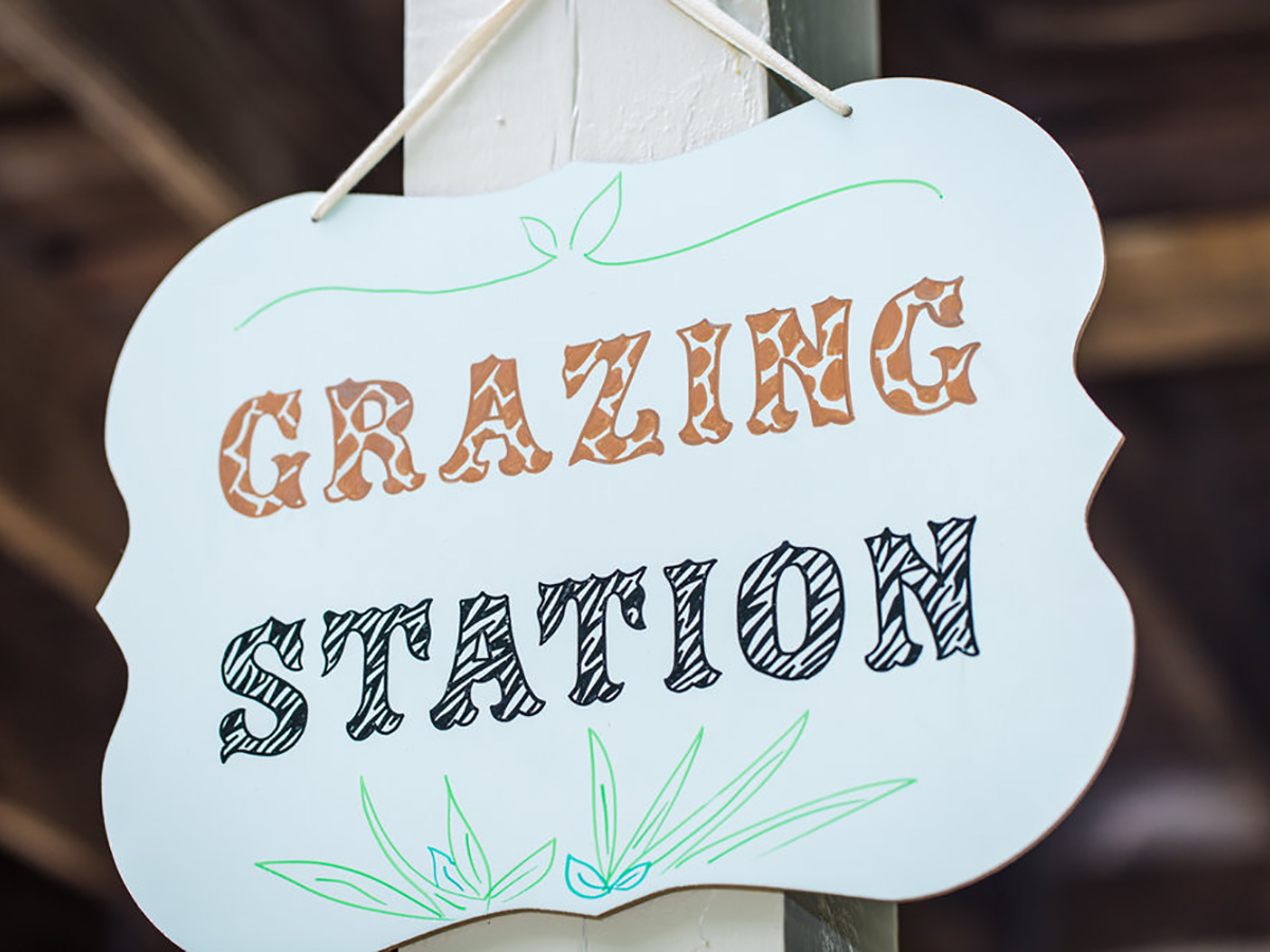 Hand-lettered Grazing Station sign for a Safari themed kids birthday party // by www.chavelli.com