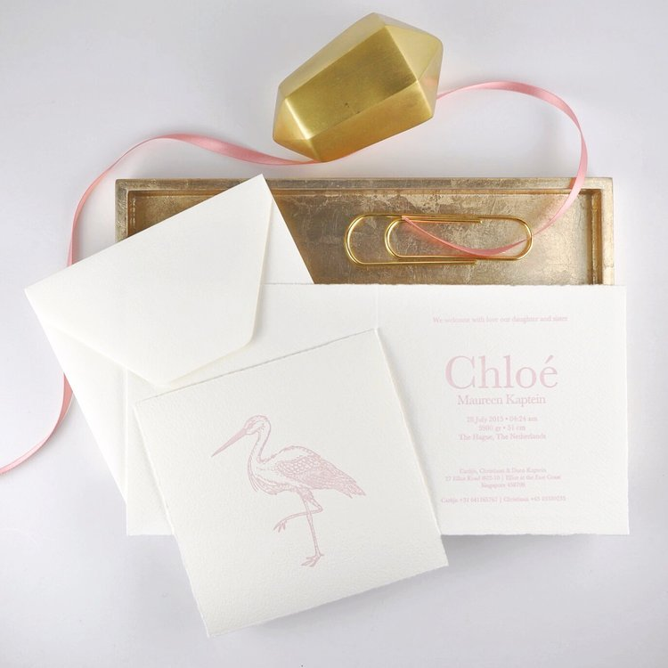 Birth Announcement with custom illustration and letterpress printing   designed and printed by Chavelli www.chavelli.com