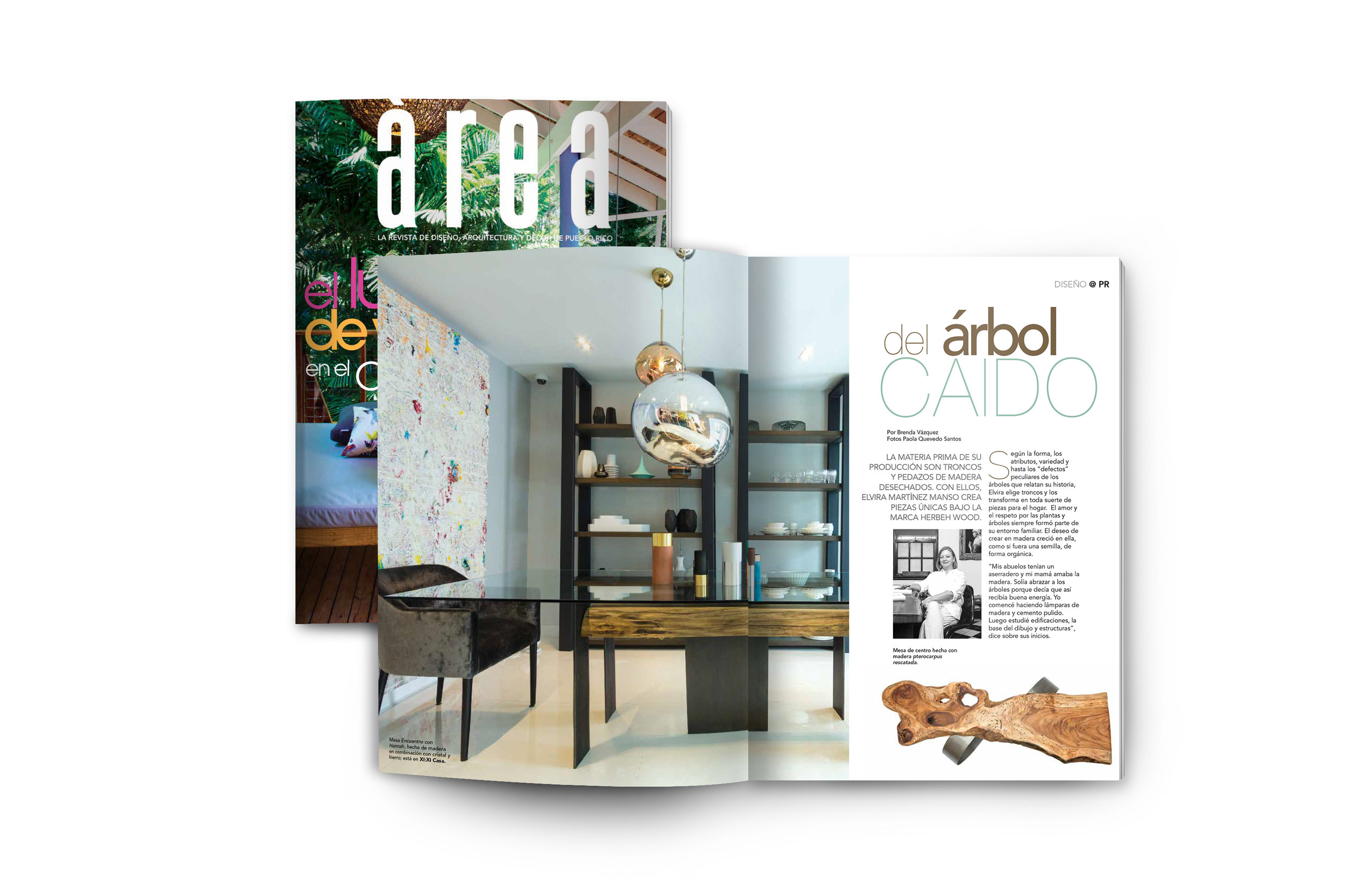 Area_Magazine.jpg