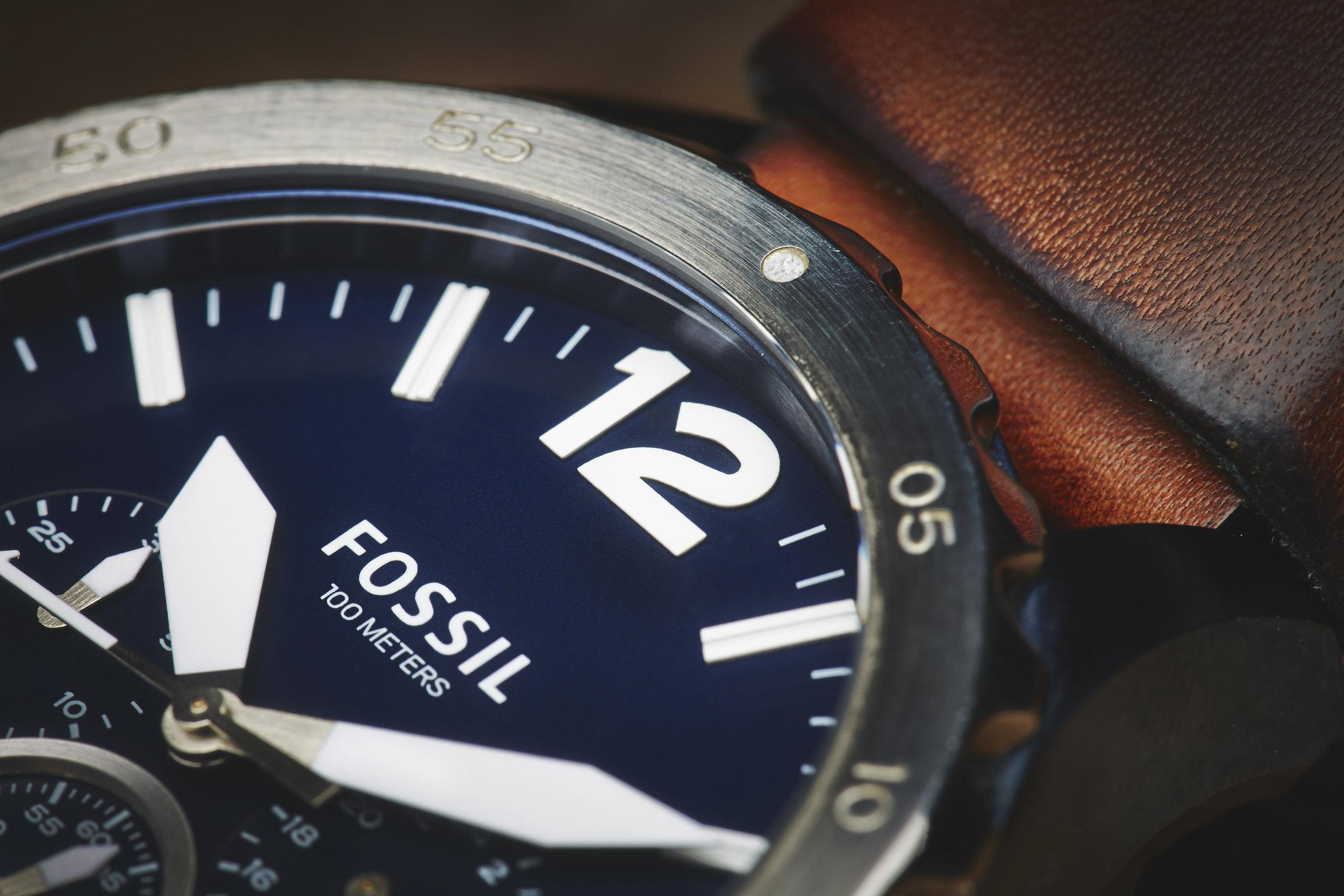 FOSSIL16917.jpg