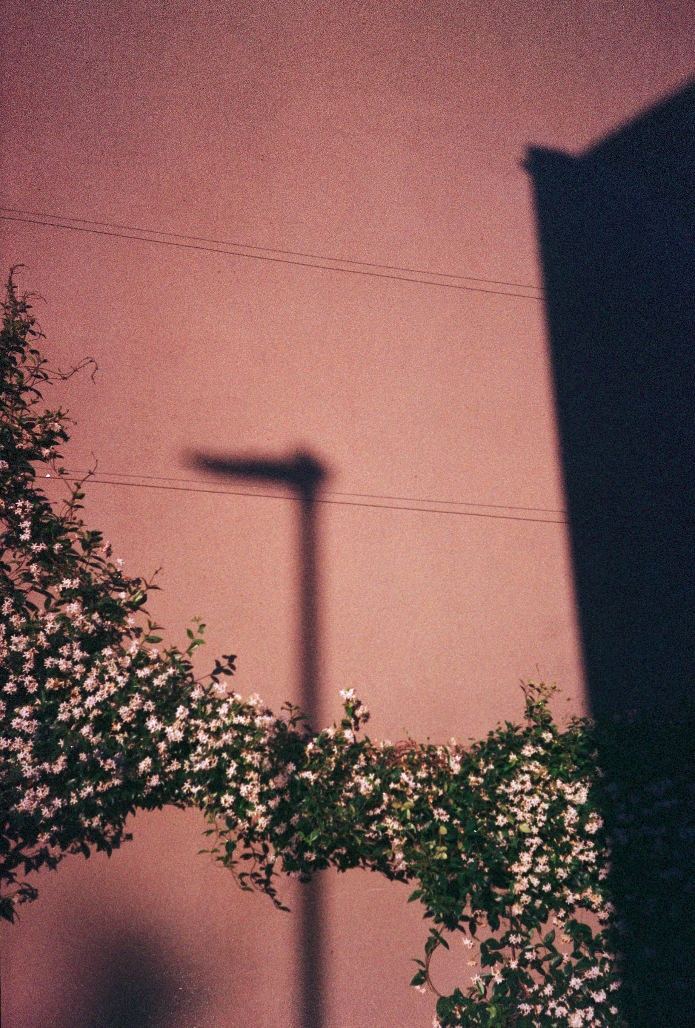 Lamp_Edit.jpg