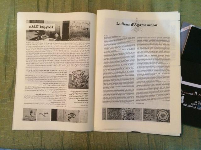 """La fleur d'Agamemnon"" an article by Benjamin Perrot"