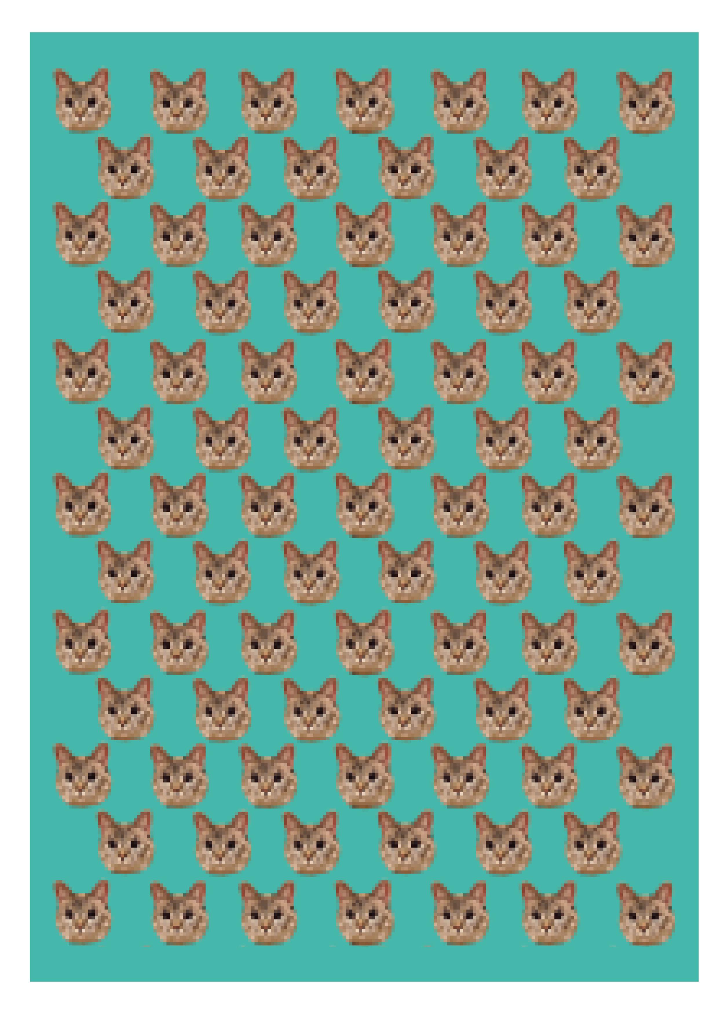 """""""Cat.tiff"""" 2013/2014"""