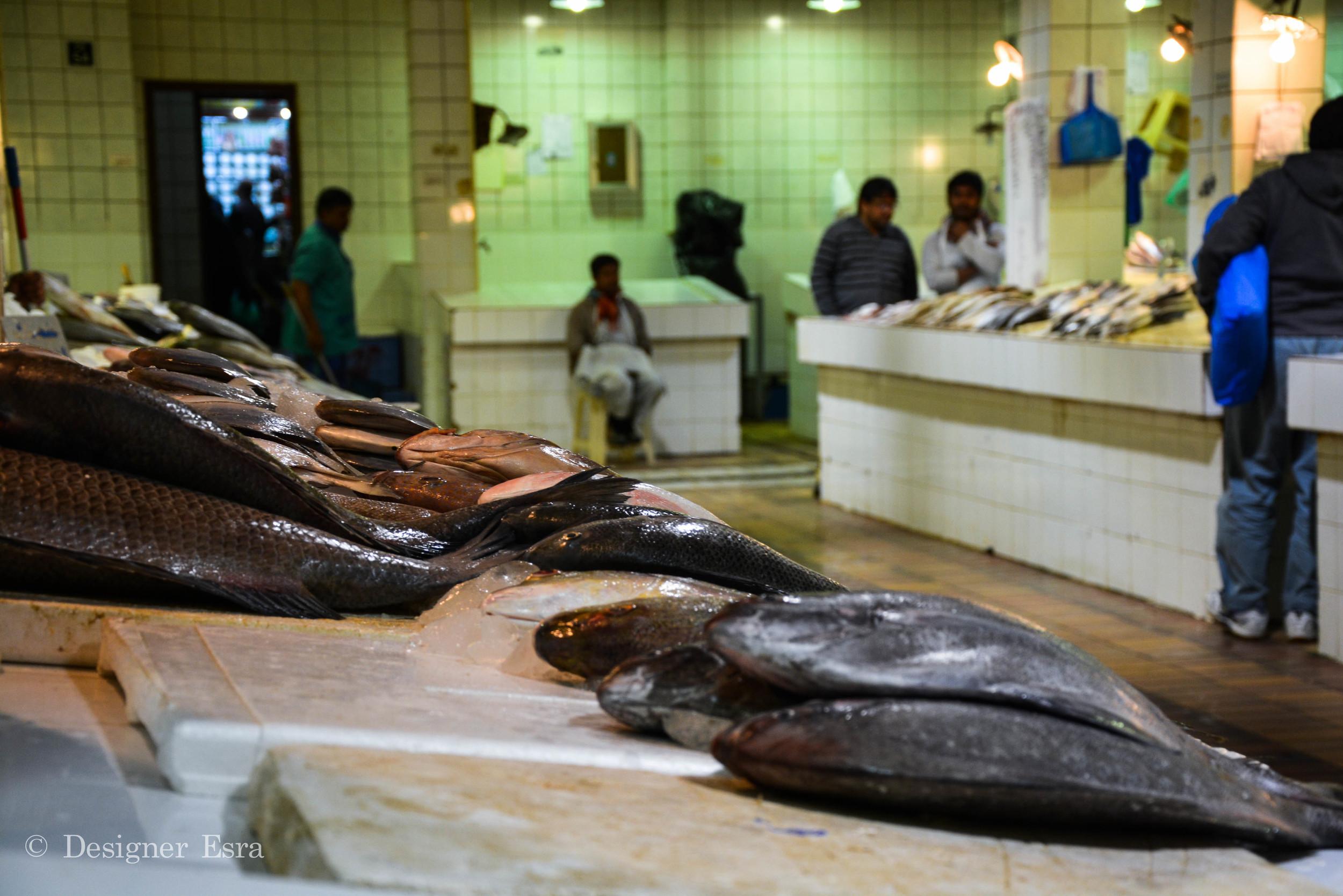 Fish Market in Kuwait