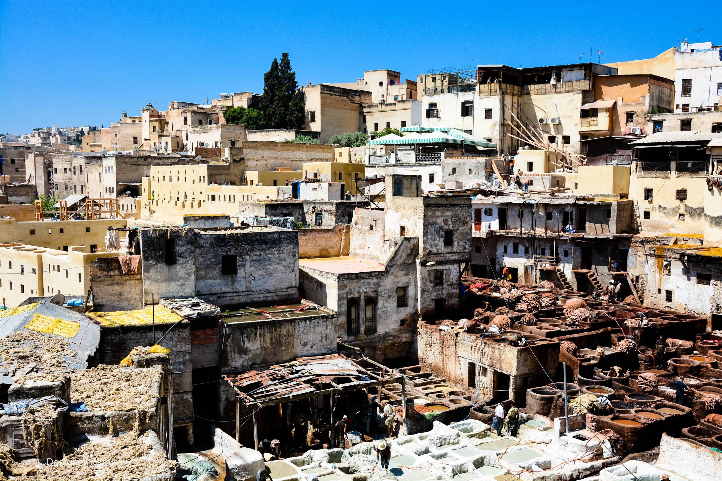 Chouara Tannery in Fes Morocco