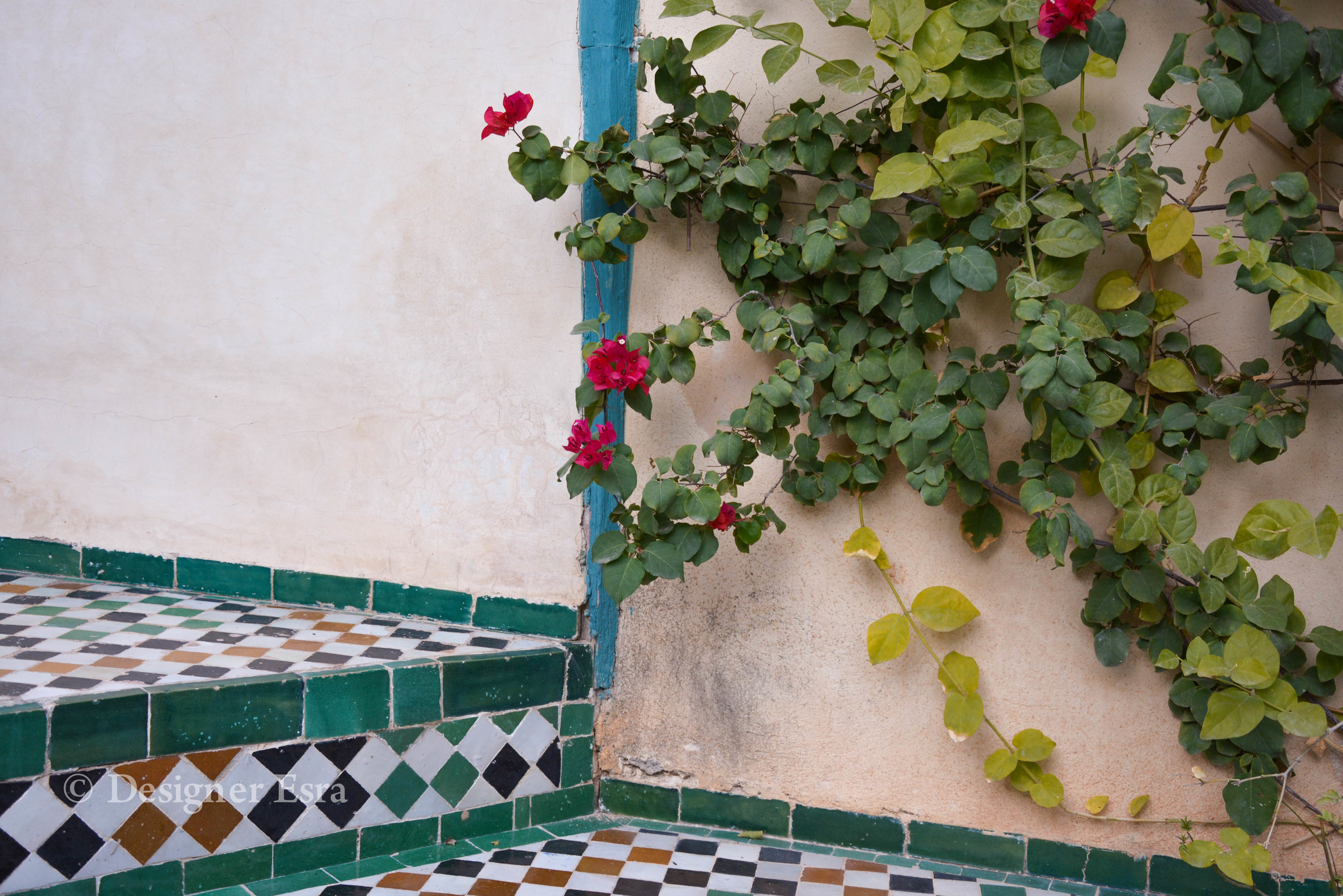 Moroccan Tiles in Cafe Fez