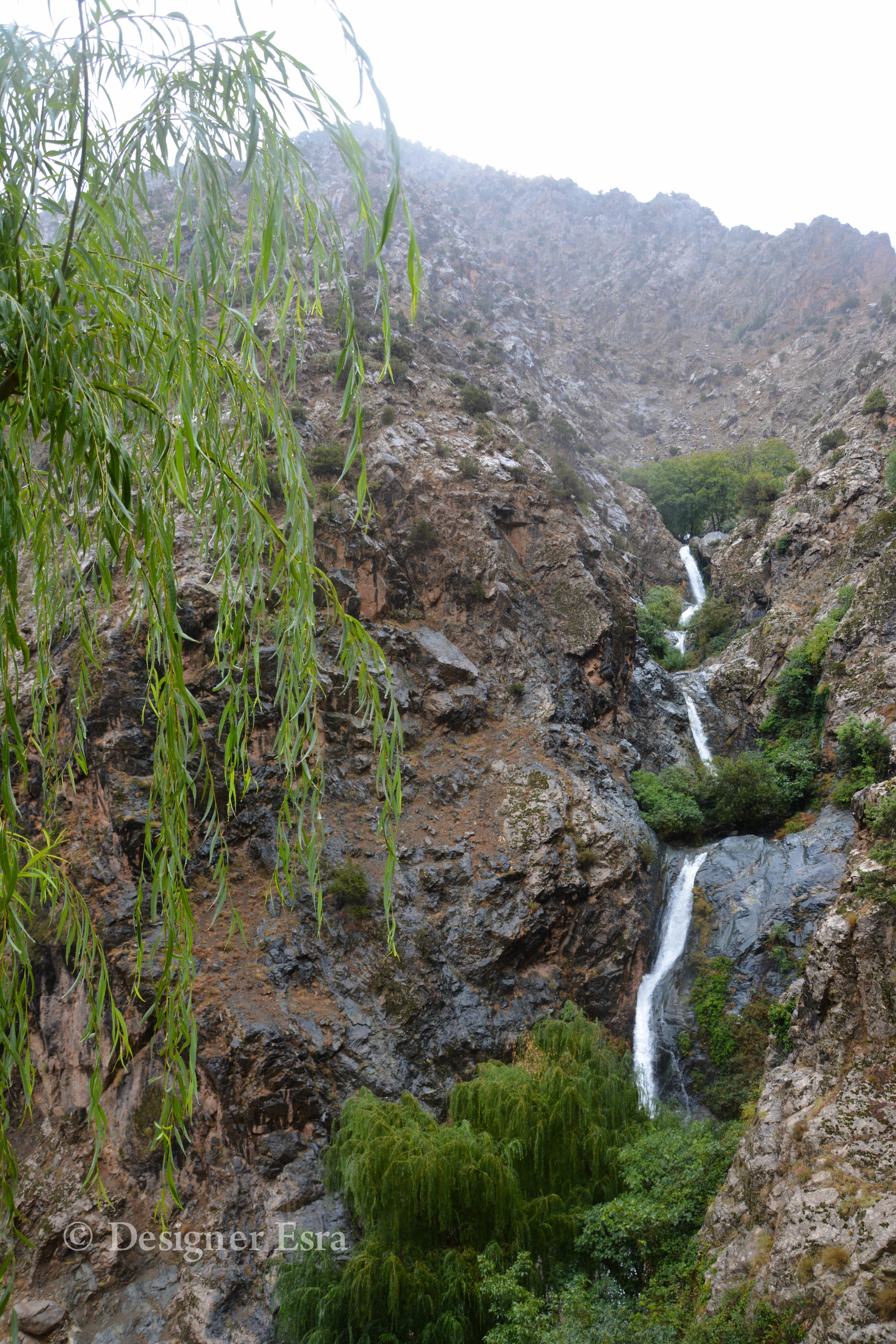 Nature in Morocco الطبيعة الخضراء في المغرب