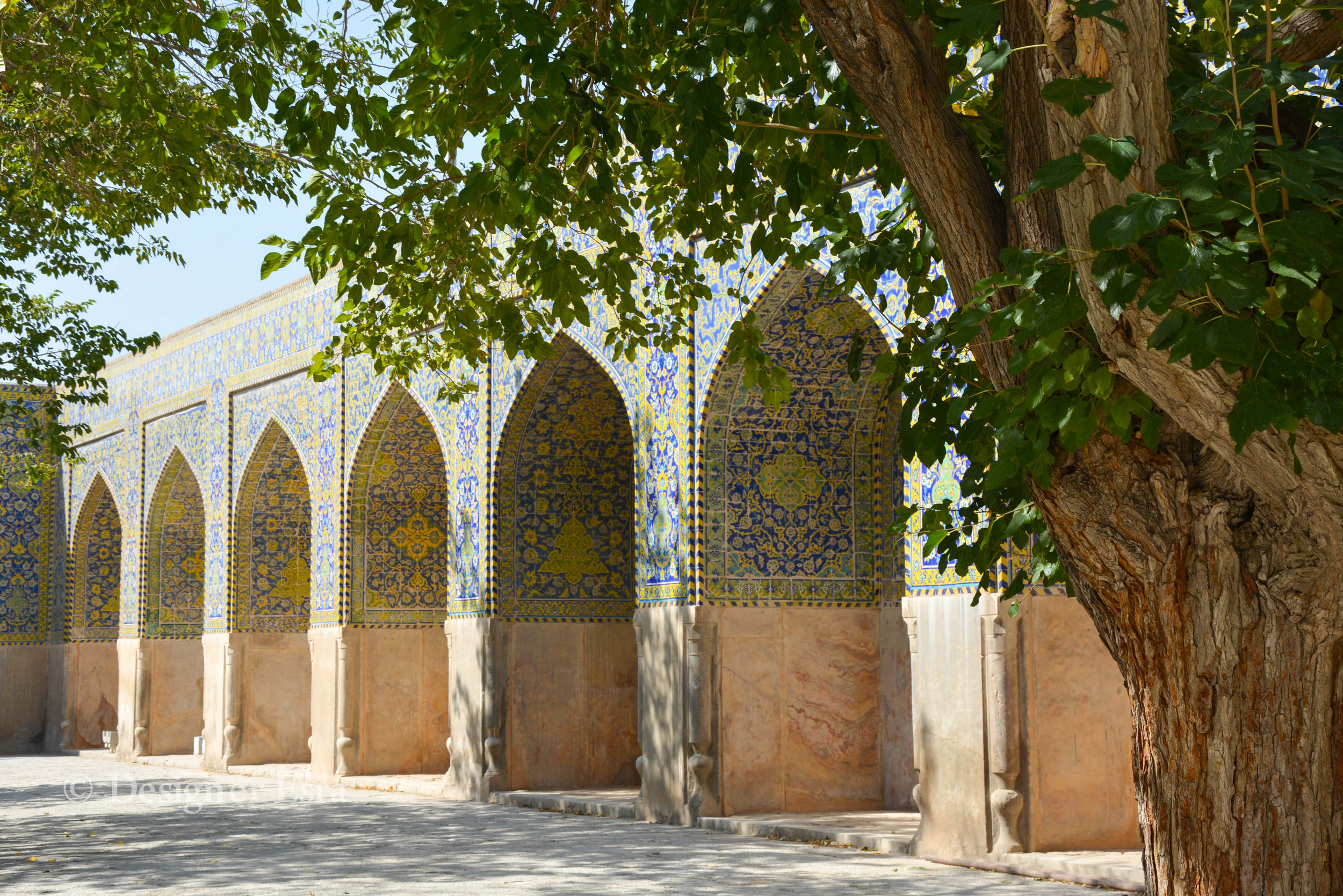 Arches covered with Biomorphic patterns in Shah (Imam-i) Mosque