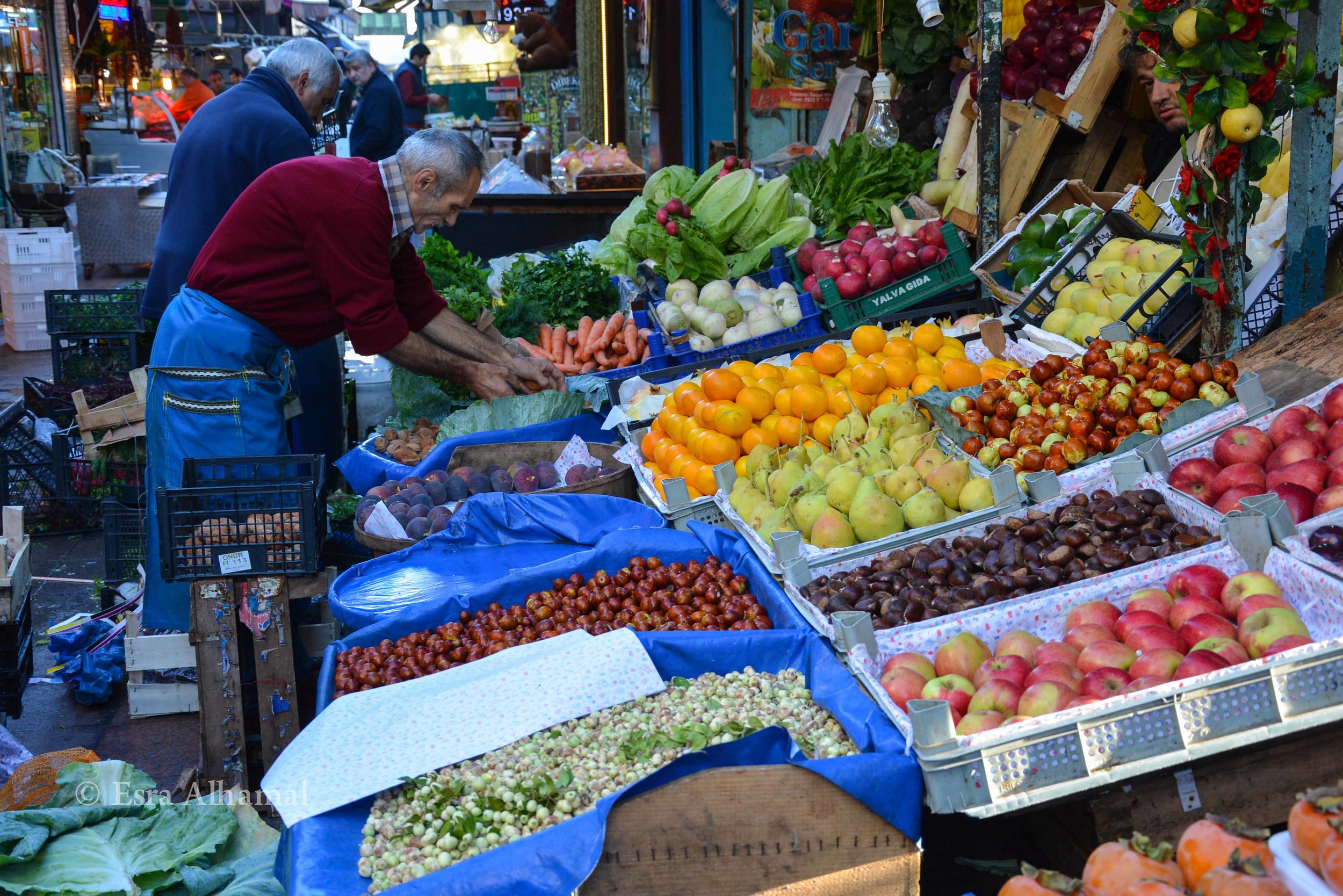 Organic Vegetables in Turkey