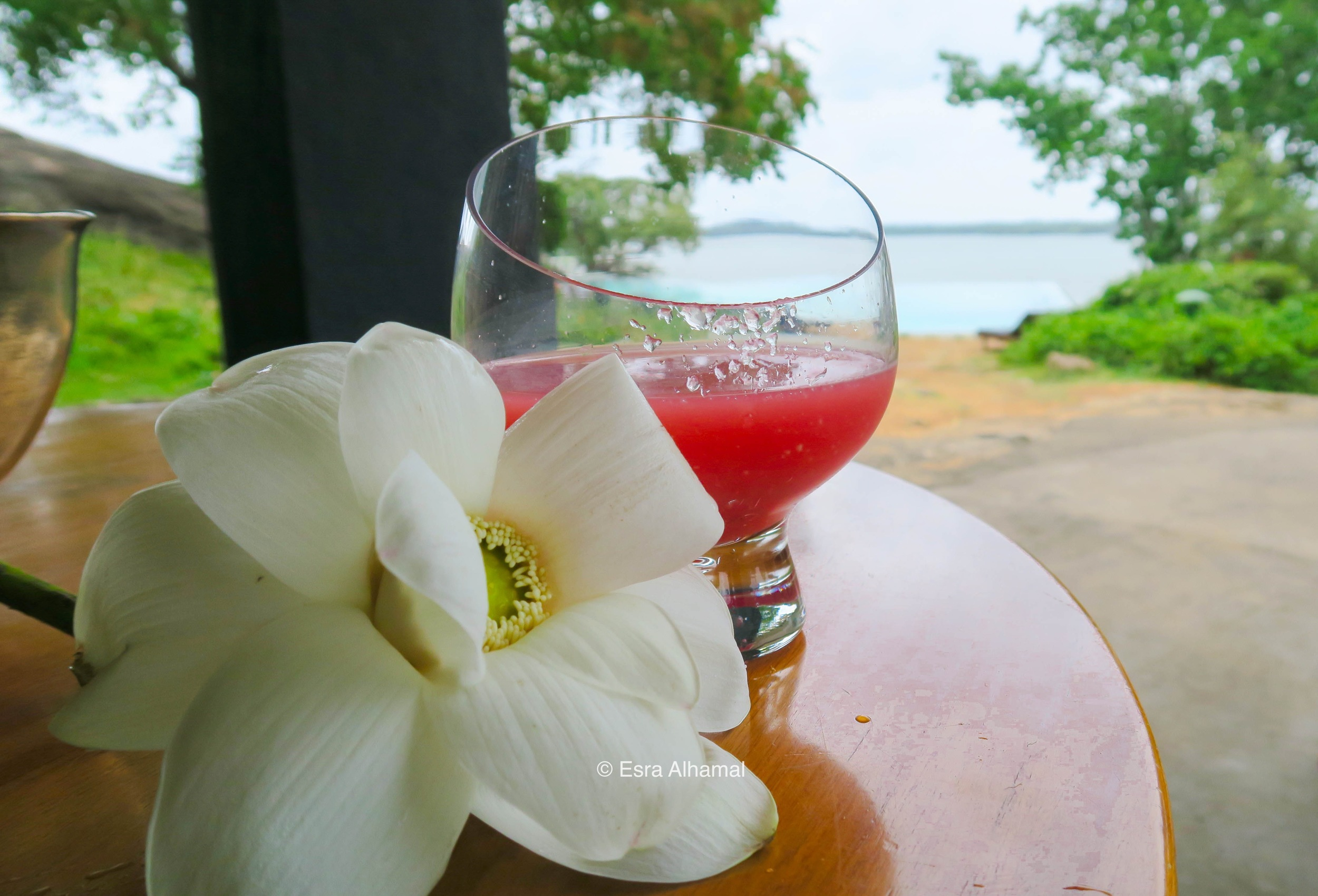 Welcome drink and flower at Heritance Kandalama