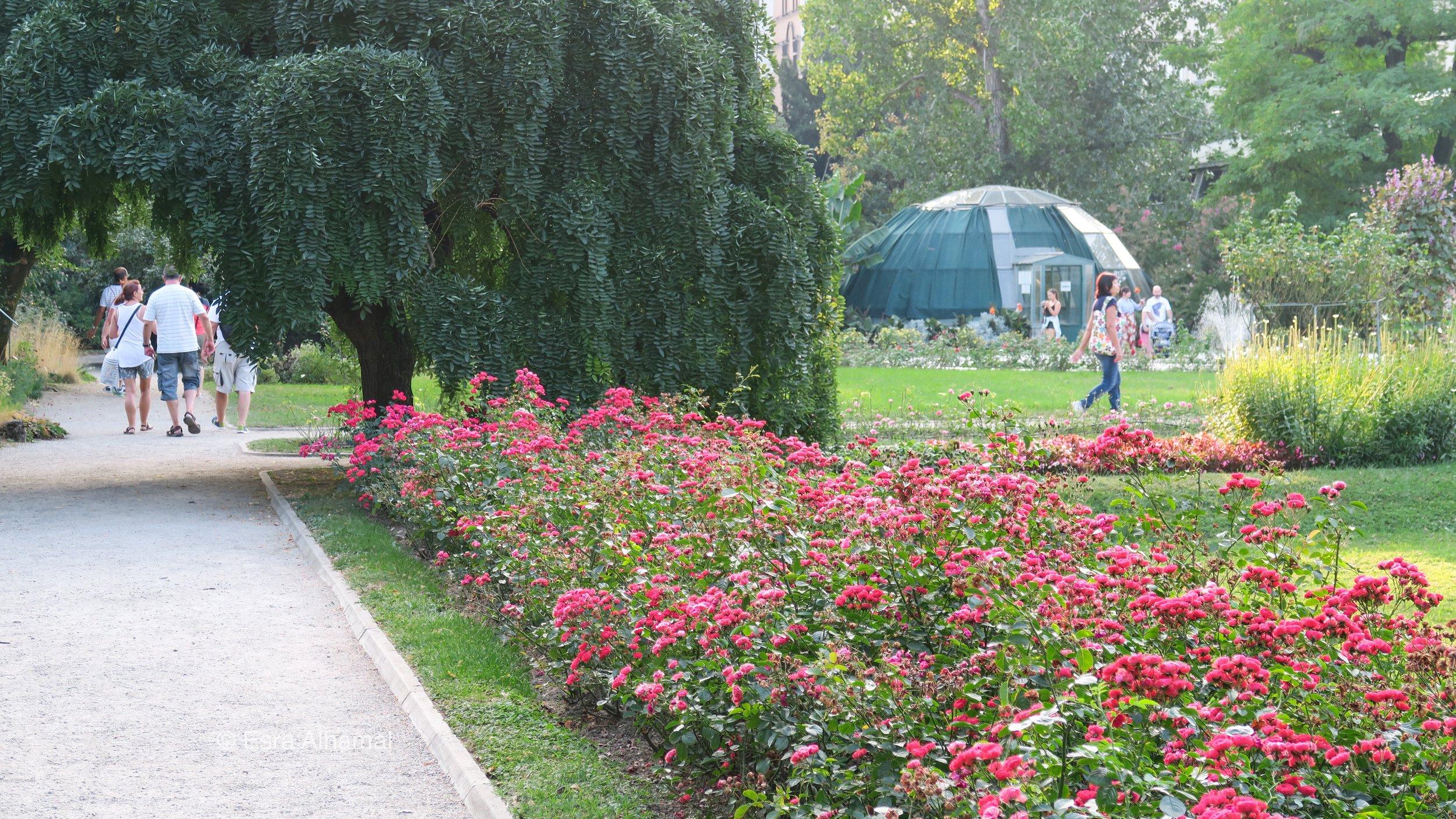 Botanical Gardens in Zagreb