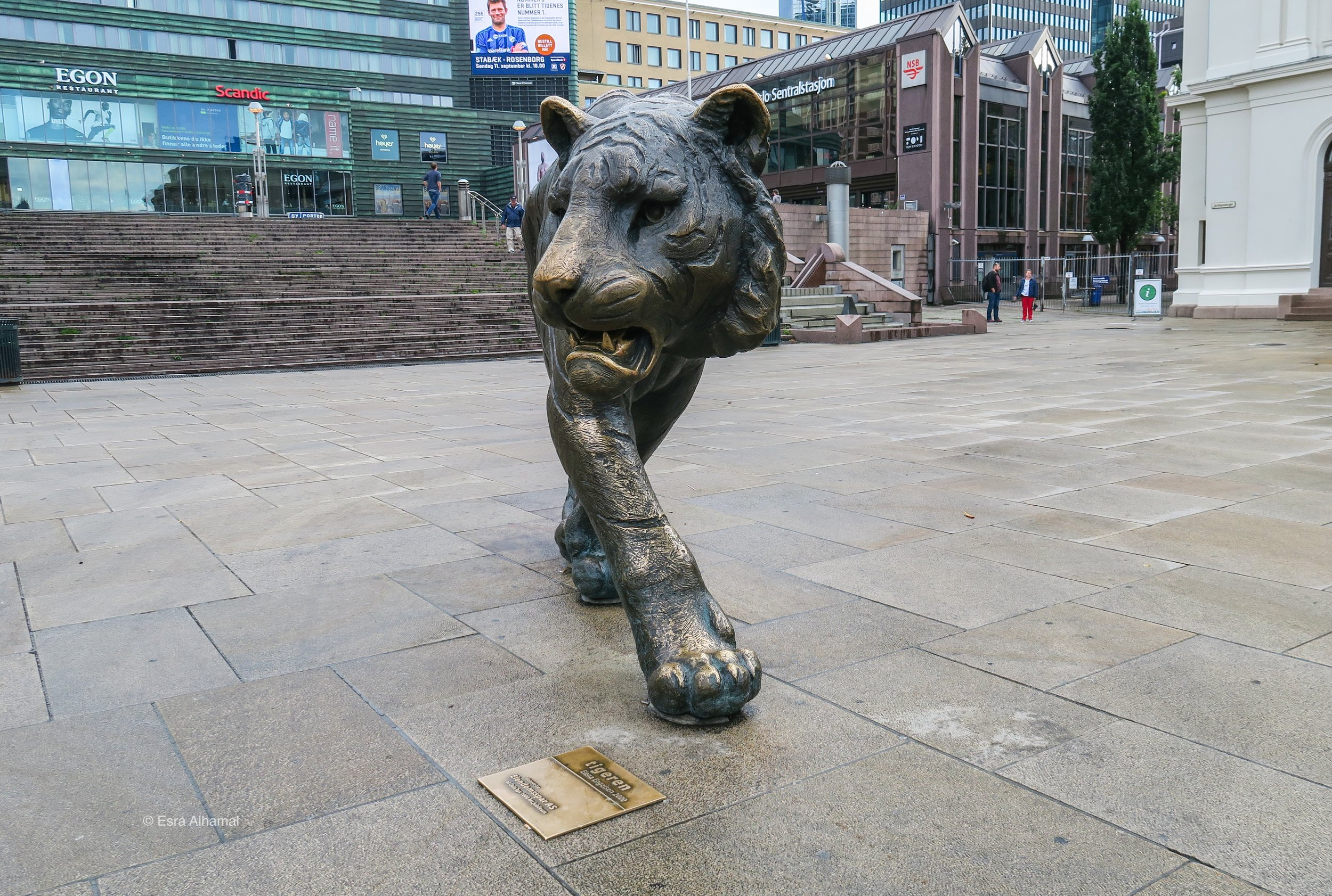 The tiger of Oslo