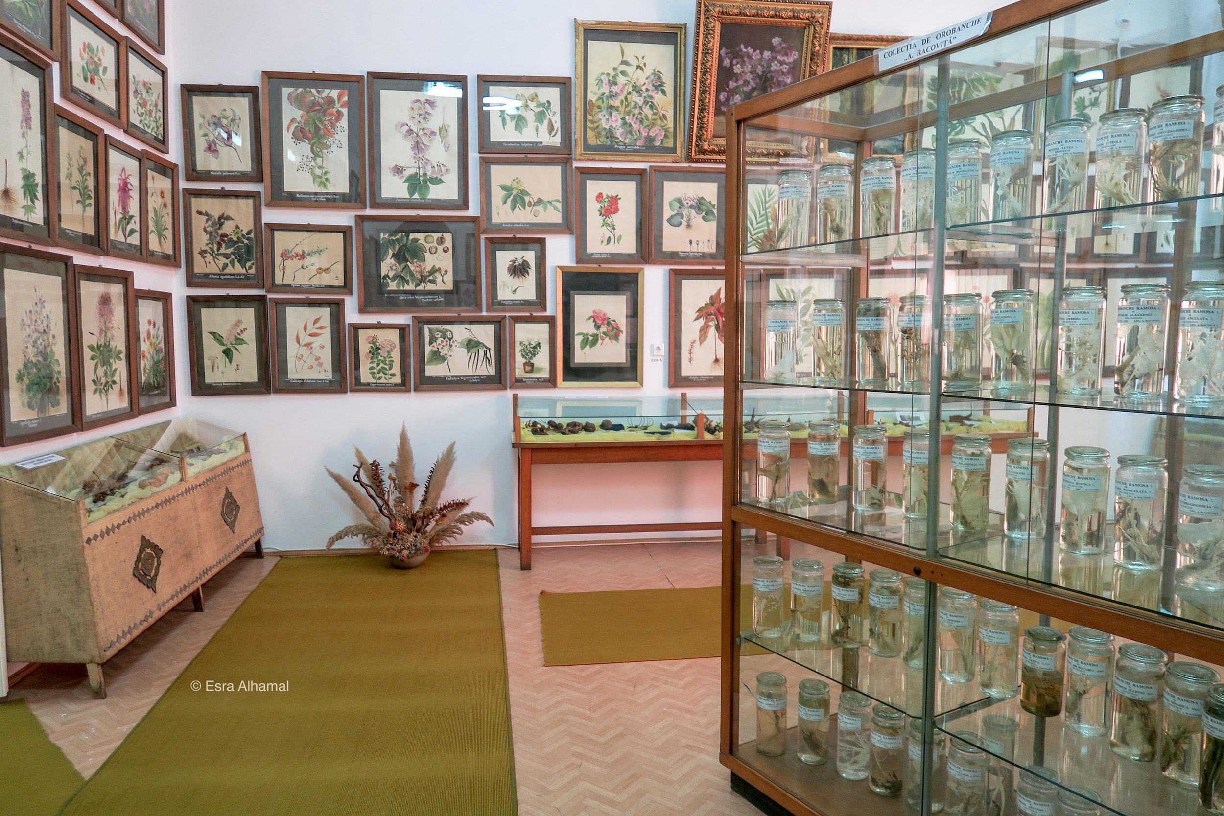متحف الحديقة النباتية في بخرست