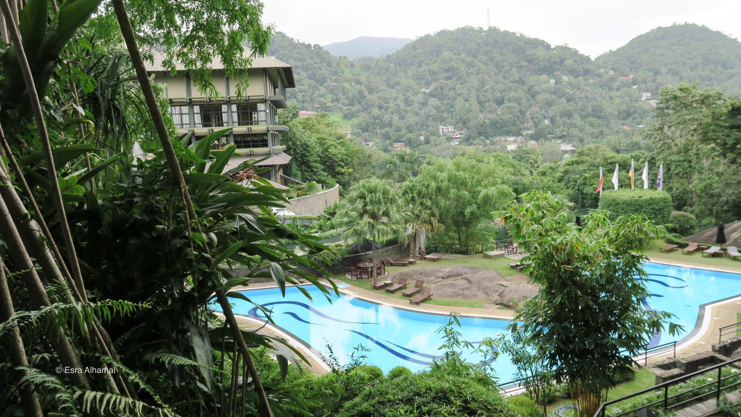 بركة السباحة في فندق إيرلز ريجنسي