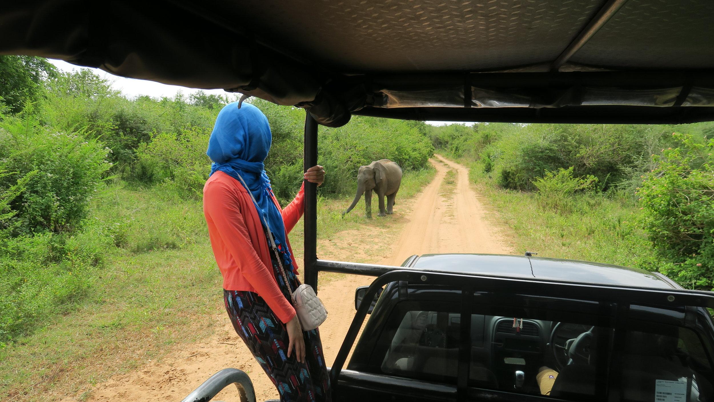 Photo from Unawatuna to Ude Wale National Park - Sri Lanka