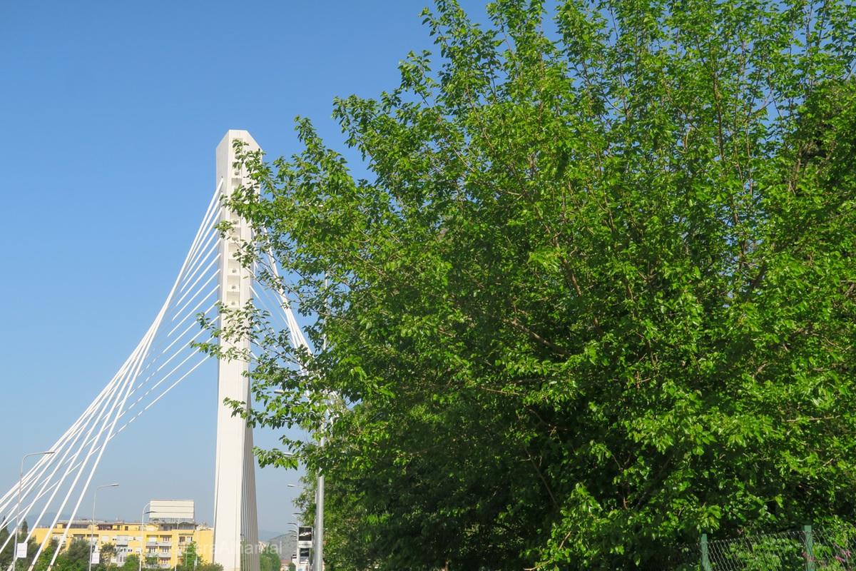 Most Milenium (Millennium Bridge)